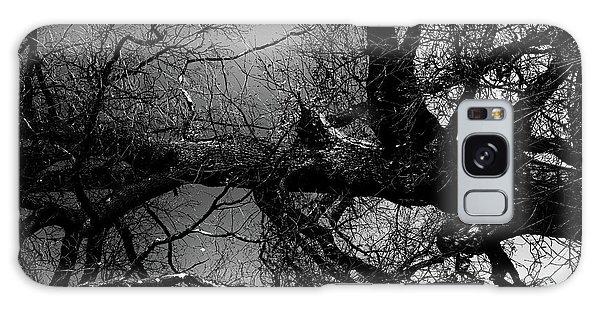 Fallen Dark Wood Forest Galaxy Case