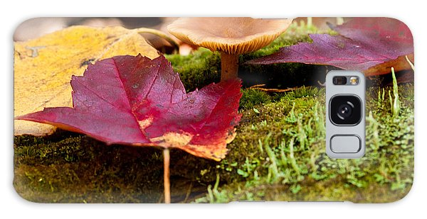 Fallen Leaves And Mushrooms Galaxy Case by Brent L Ander