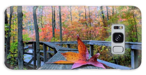 Fallen Maple Leaf Galaxy Case