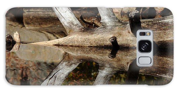 Fallen Tree Mirror Image Galaxy Case by Debbie Oppermann