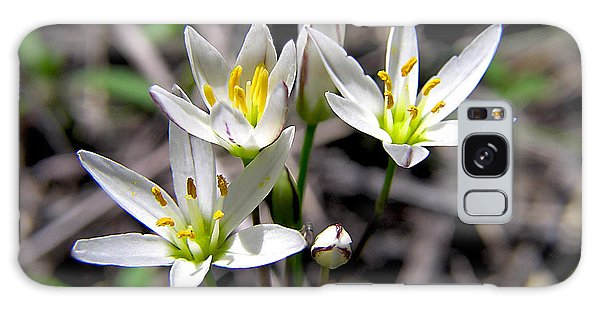 False Garlic Wild Flower Galaxy Case