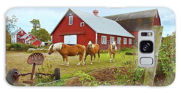 Family On The Farm Galaxy Case