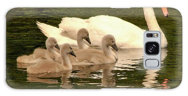 Family Swan  Galaxy Case
