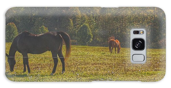 1012 - Fargo Road Horses I Galaxy Case