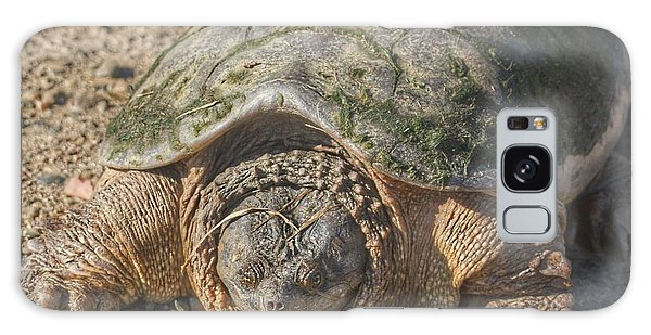 1013 - Fargo Road Turtle Galaxy Case