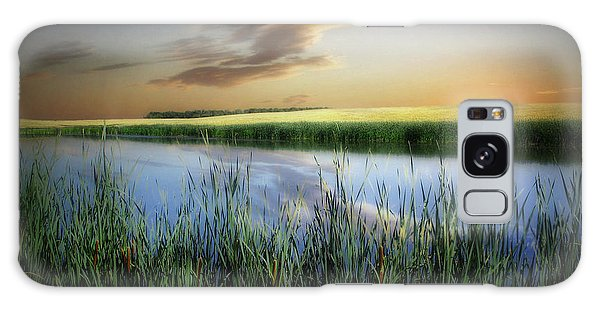 Farm Pond Galaxy Case