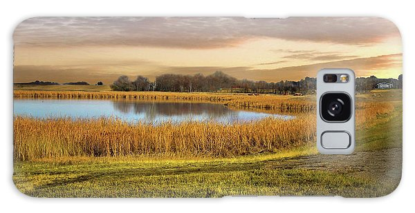 Farmland Pond Galaxy Case