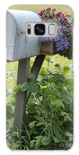 Farm's Mailbox Galaxy Case