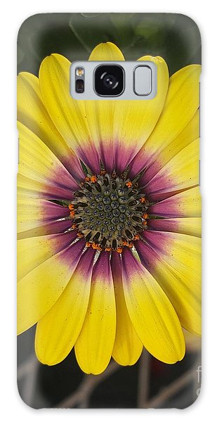 Fascinating Yellow Flower Galaxy Case