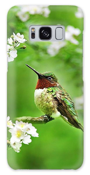 Fauna And Flora - Hummingbird With Flowers Galaxy Case