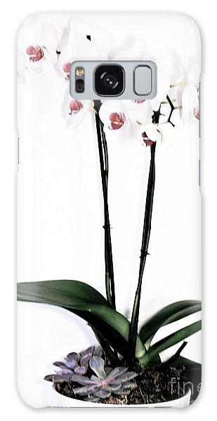 Favorite Gift Of Orchids Galaxy Case by Marsha Heiken