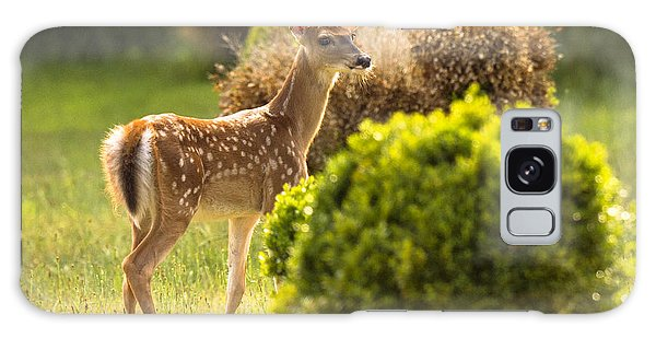 Galaxy Case featuring the photograph Fawn by Angel Cher