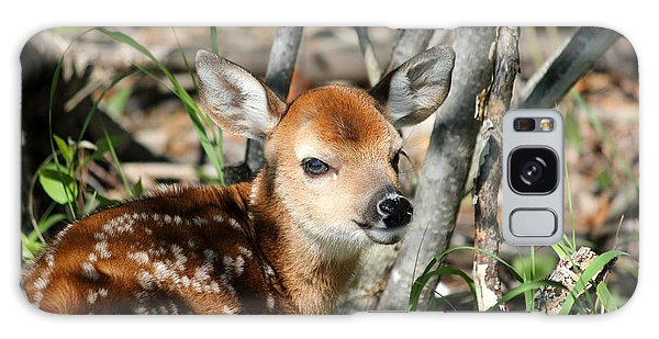 Fawn Face Galaxy Case by Brook Burling