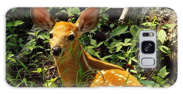 Fawn In The Woods 2 Galaxy Case