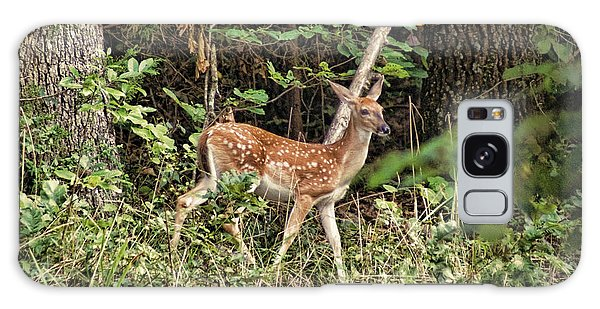 Fawn In The Woods Galaxy Case