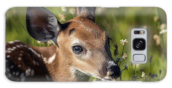 Fawn In Wildflowers Galaxy Case