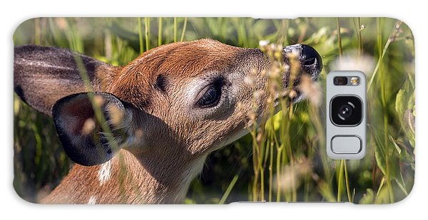 Fawn Smelling The Wildflowers Galaxy Case