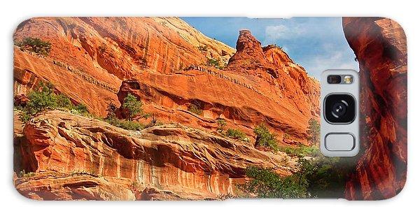 Fay Canyon Sandstone, Sedona, Arizona Galaxy Case