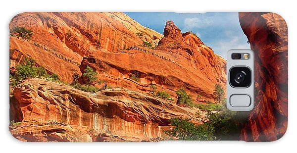 Fay Canyon Sandstone, Sedona, Arizona Galaxy Case