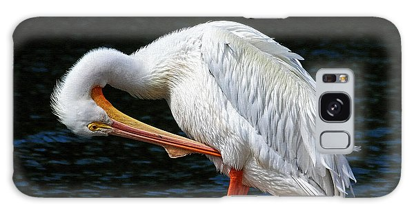 Feather Check Galaxy Case by HH Photography of Florida