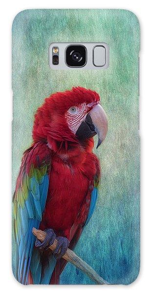 Macaw Galaxy Case - Feathered Friend by Kim Hojnacki