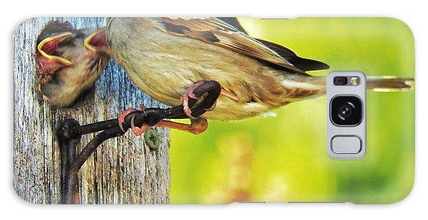 Feeding Baby Sparrows 1 Galaxy Case by Judy Via-Wolff