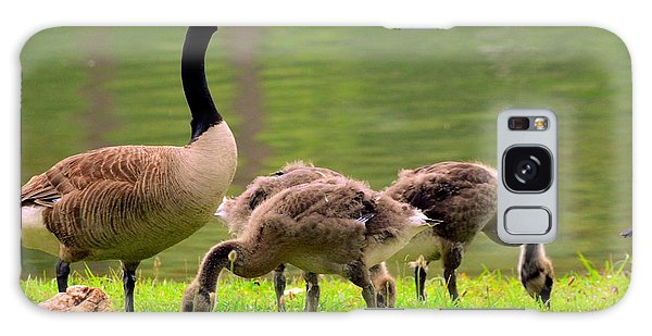 Gosling Galaxy Case - Feeding Time With The Babies by Lisa Wooten