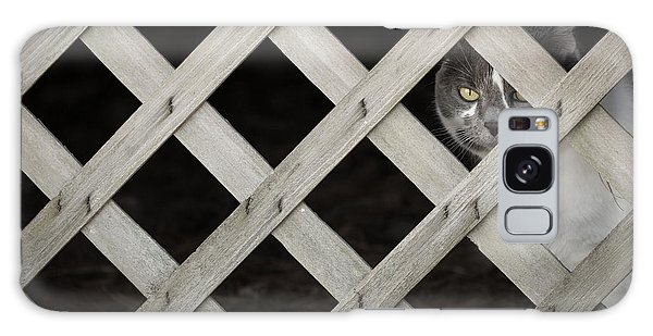 Feline Fence Galaxy Case