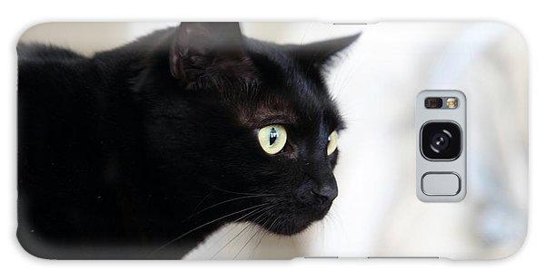 Feline On The Prowl Galaxy Case