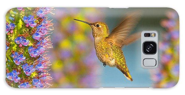 Female Anna's Hummingbird Huntington Beach California Galaxy Case