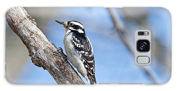 Female Downey Woodpecker 1104  Galaxy Case by Michael Peychich