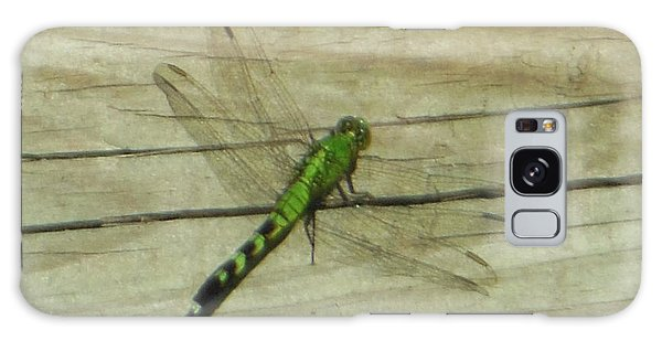 Female Eastern Pondhawk Dragonfly Galaxy Case