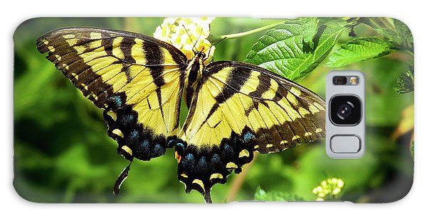 Female Eastern Tiger Swallowtail  Galaxy Case