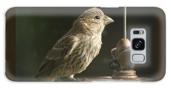 Female House Finch On Feeder Galaxy Case