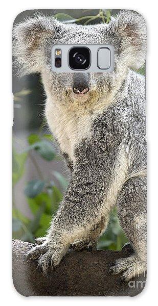 Female Koala Galaxy Case by Jamie Pham