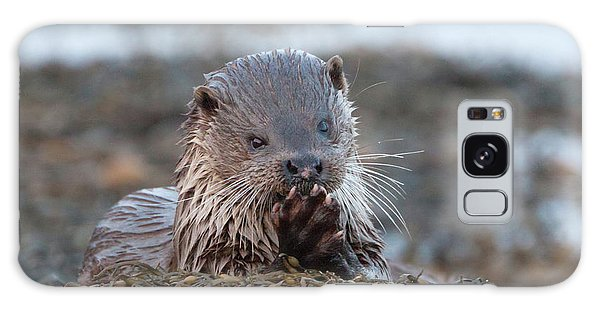 Female Otter Eating Galaxy Case