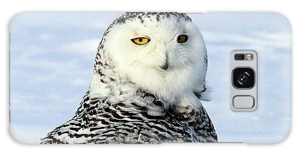 Female Snowy Owl Galaxy Case