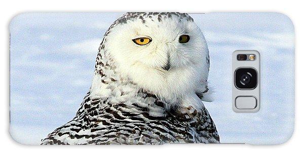 Female Snowy Owl Galaxy Case