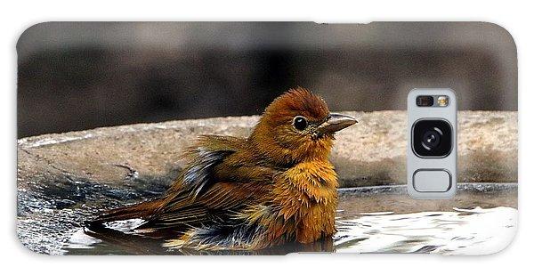 Female Summer Tanager In Bird Bath Galaxy Case
