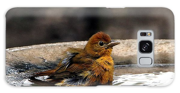 Female Summer Tanager In Bird Bath Galaxy Case