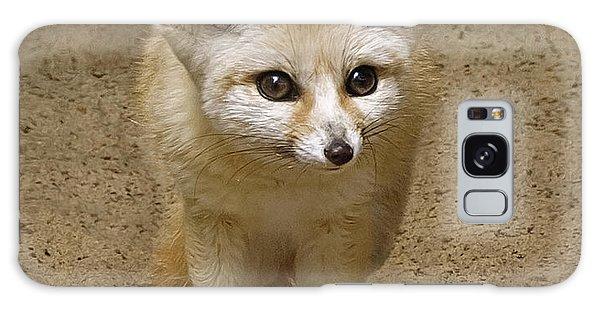 Fennec Fox Galaxy Case
