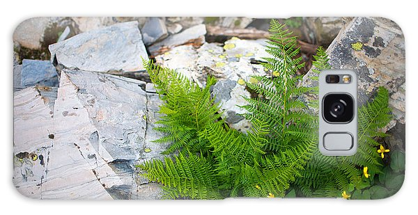 Fern Among Glacial Rock Galaxy Case