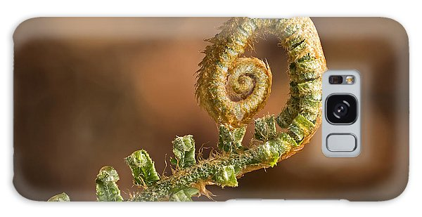 Fern Frond - 365-39 Galaxy Case
