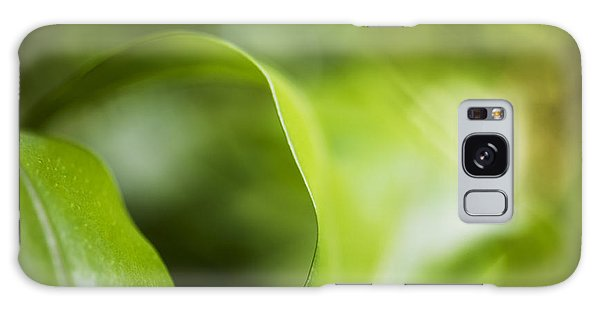Fern Leaf Macro Galaxy Case