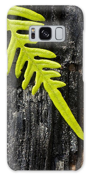 Fern On Burnt Log Galaxy Case