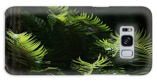 Ferns In The Forest Galaxy Case by Keith Boone