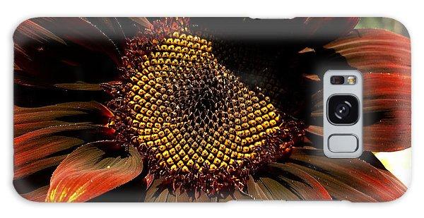 Fibonacci Hues Galaxy Case