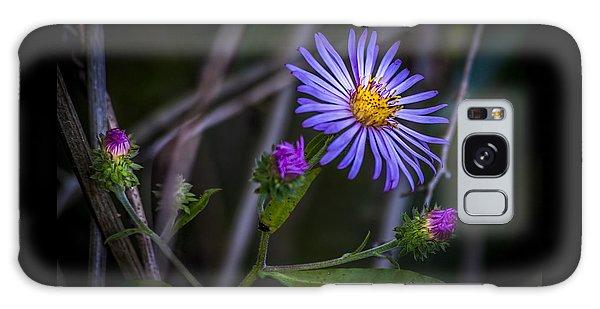 Handrail Galaxy Case - Field  Beauty by Marvin Spates