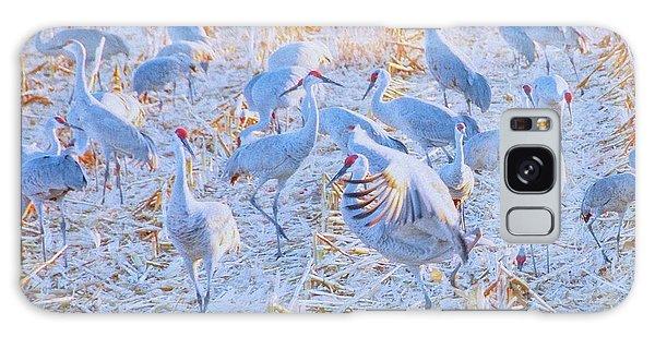 Field Of Cranes, Sandhills Galaxy Case