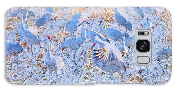 Field Of Cranes, Sandhills Galaxy Case